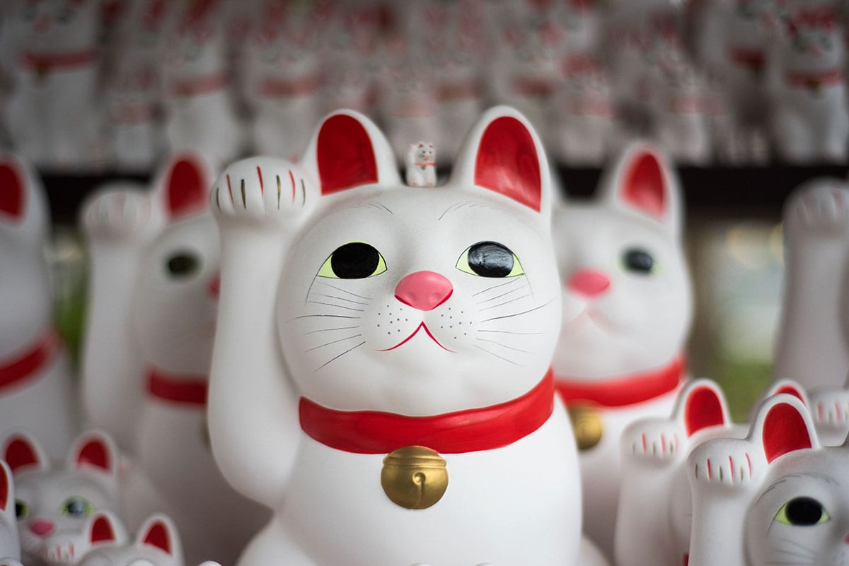 a shelf full of maneki-neko, or 'Lucky waving cat' figurines • 'Crunching the search marketing numbers' Earnest Agency Blog